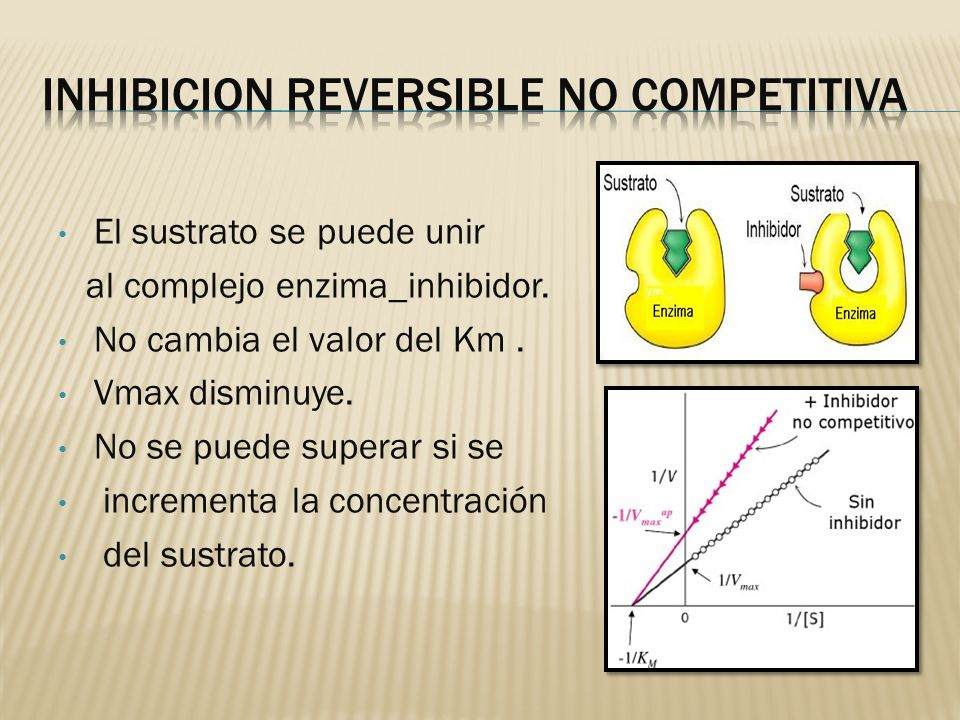 INHIBICION REVERSIBLE NO COMPETITIVA
