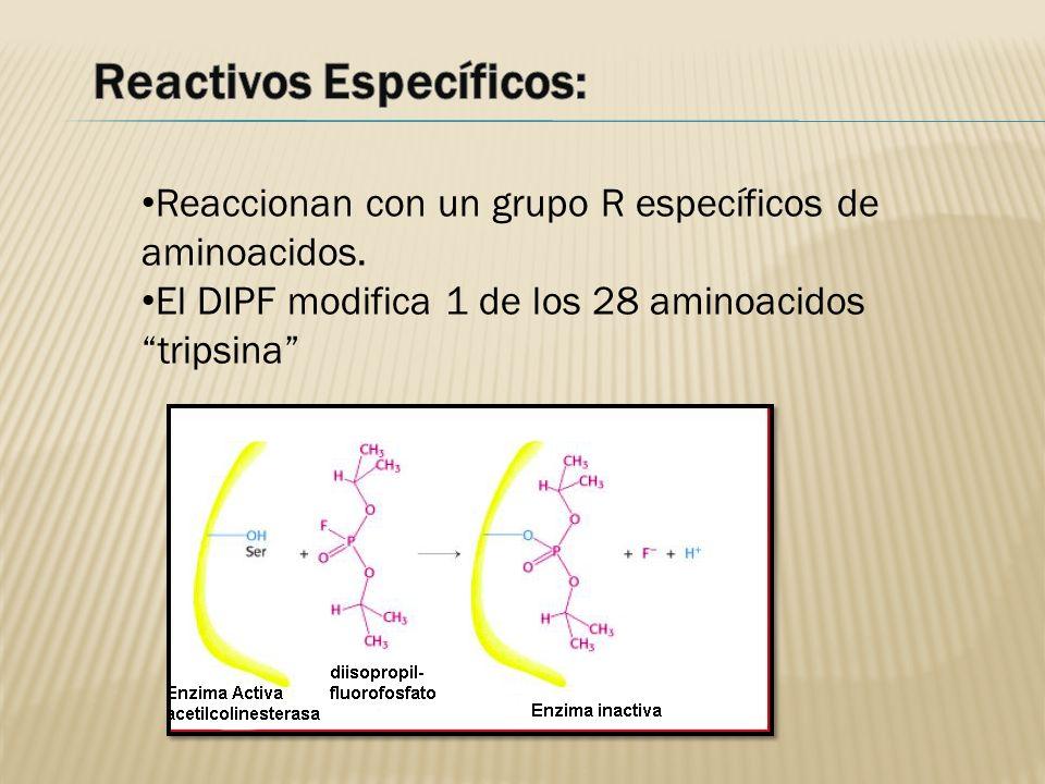 Reactivos Específicos: