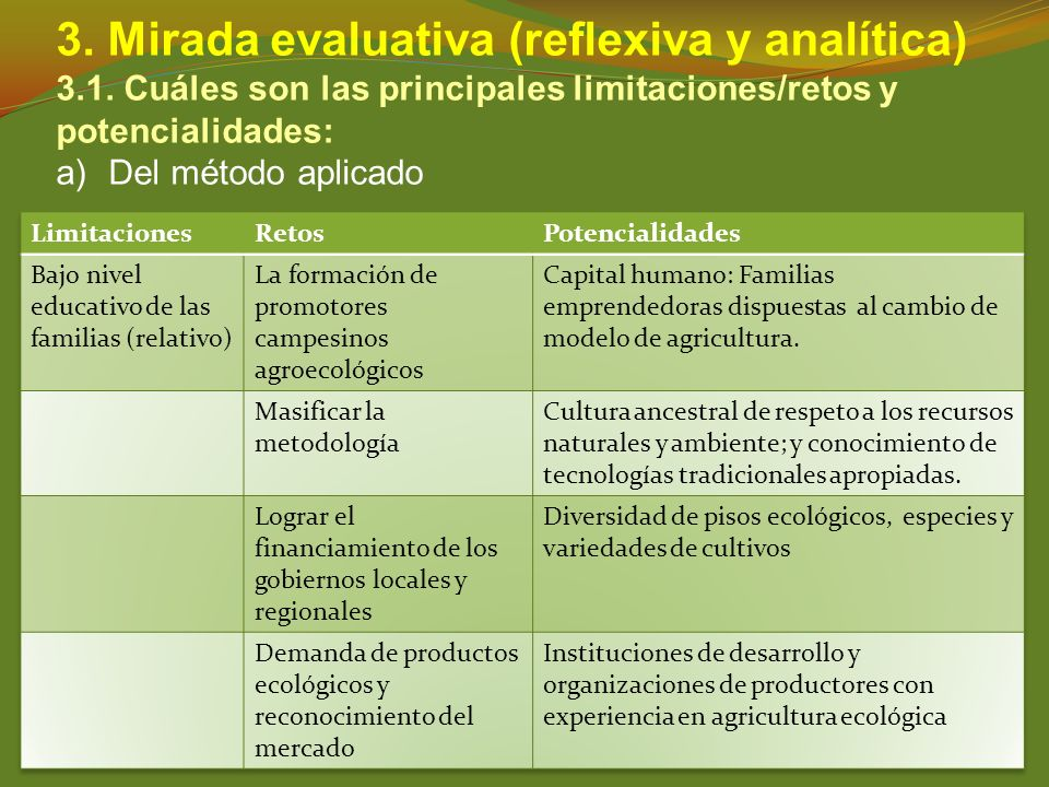 3. Mirada evaluativa (reflexiva y analítica)