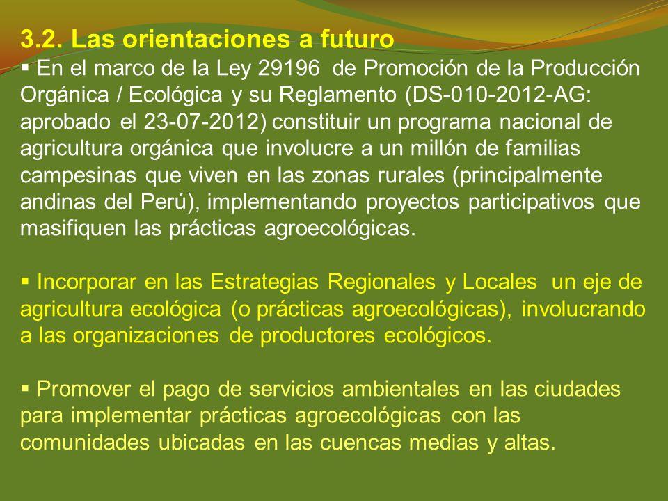 3.2. Las orientaciones a futuro
