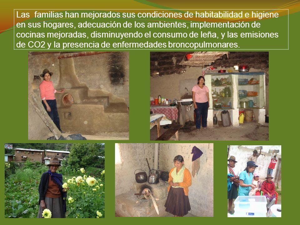 Las familias han mejorados sus condiciones de habitabilidad e higiene en sus hogares, adecuación de los ambientes, implementación de cocinas mejoradas, disminuyendo el consumo de leña, y las emisiones de CO2 y la presencia de enfermedades broncopulmonares.