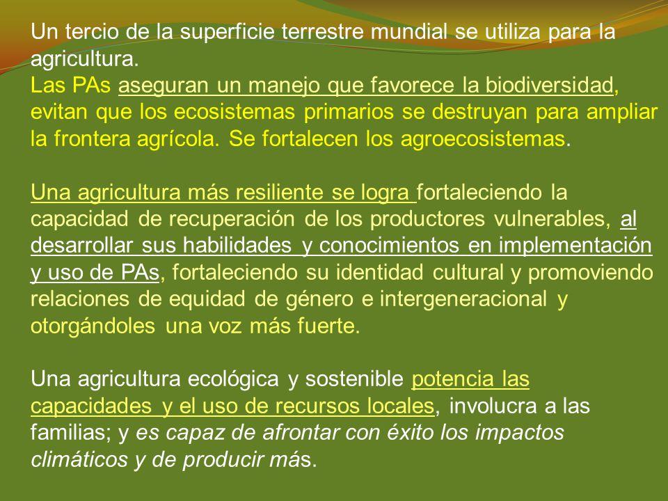 Un tercio de la superficie terrestre mundial se utiliza para la agricultura.