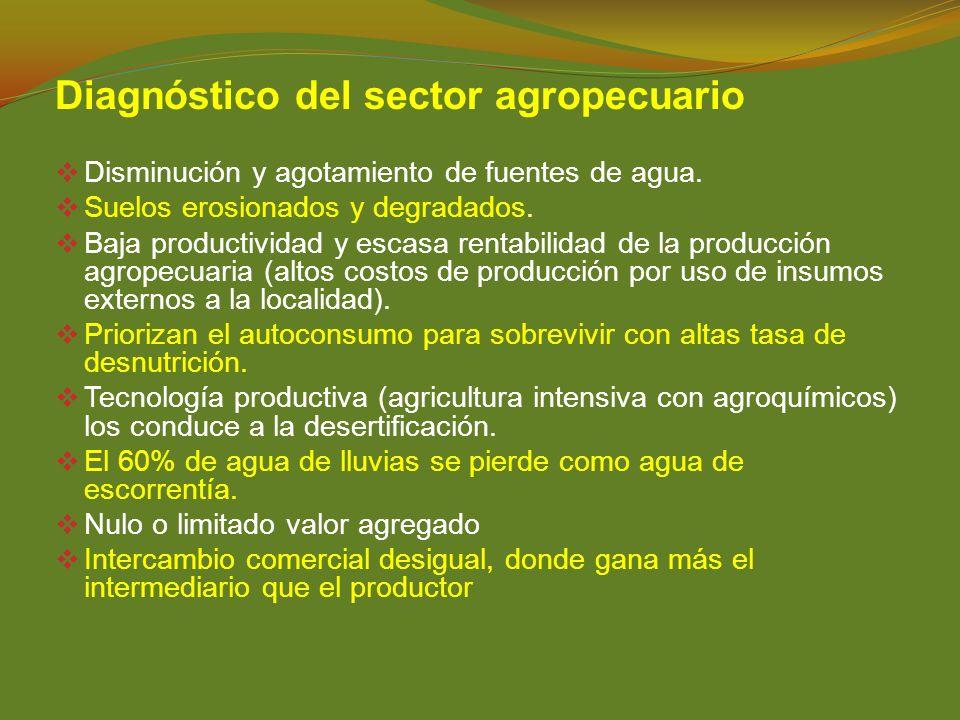 Diagnóstico del sector agropecuario