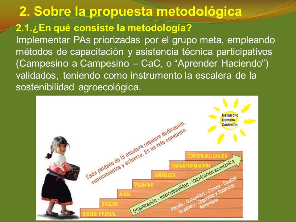 2. Sobre la propuesta metodológica