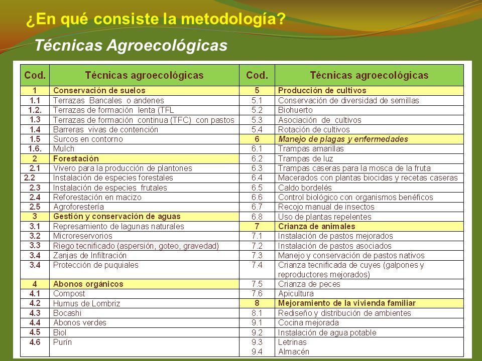 ¿En qué consiste la metodología