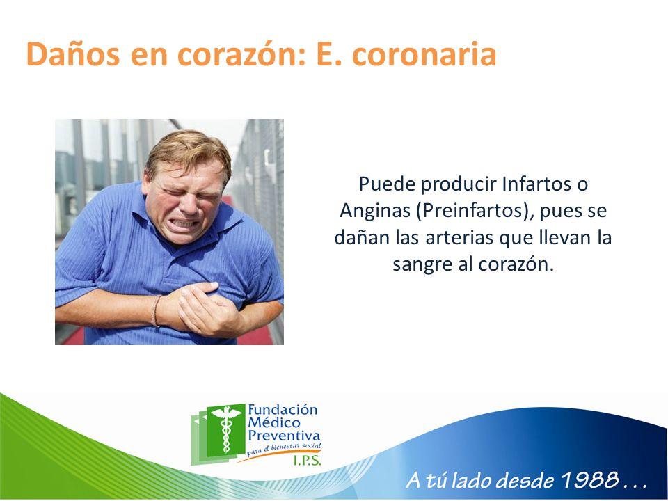 Daños en corazón: E. coronaria