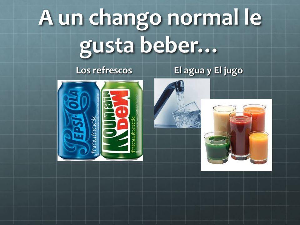 A un chango normal le gusta beber…