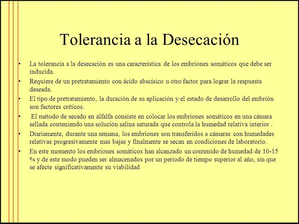 Tolerancia a la Desecación
