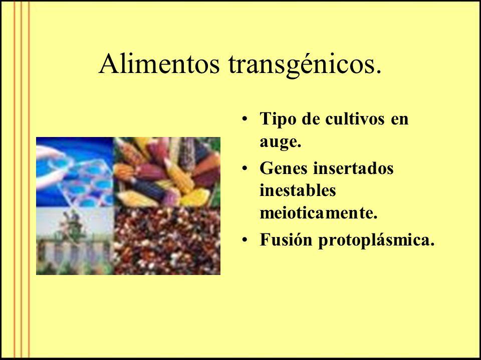 Alimentos transgénicos.