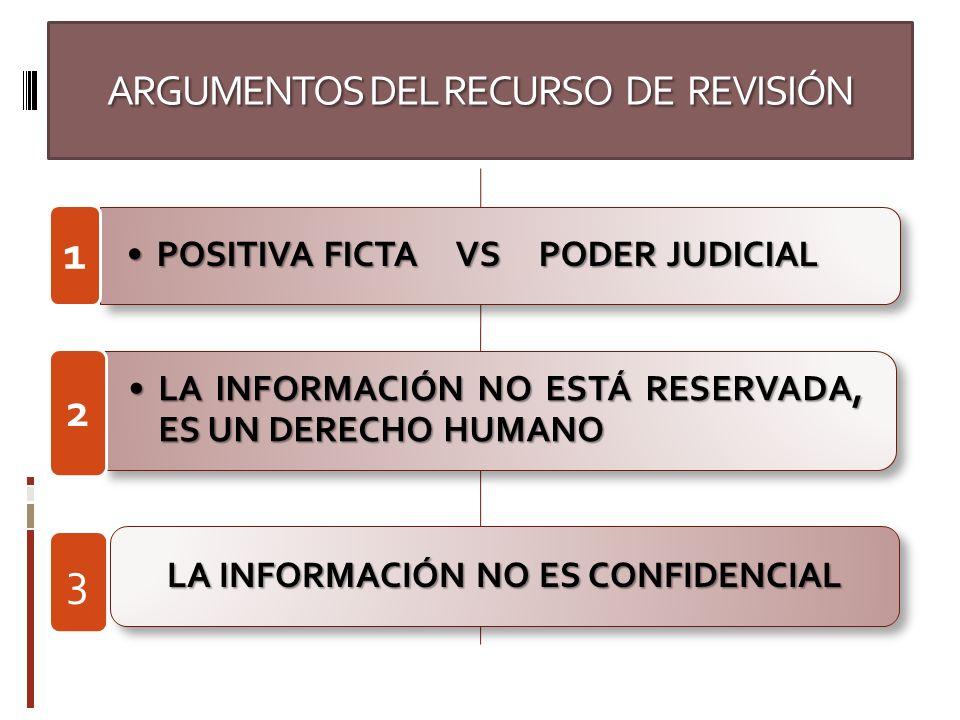 ARGUMENTOS DEL RECURSO DE REVISIÓN