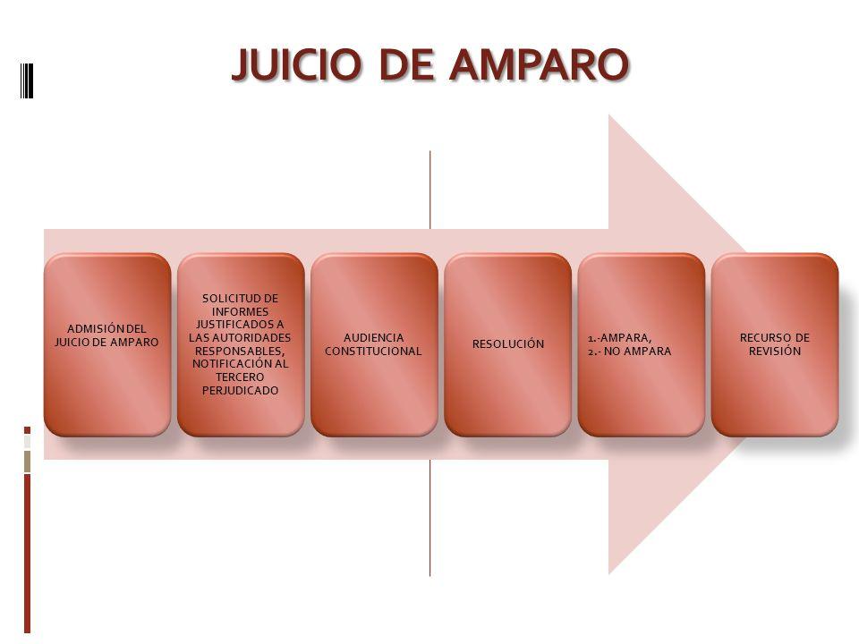 ADMISIÓN DEL JUICIO DE AMPARO AUDIENCIA CONSTITUCIONAL