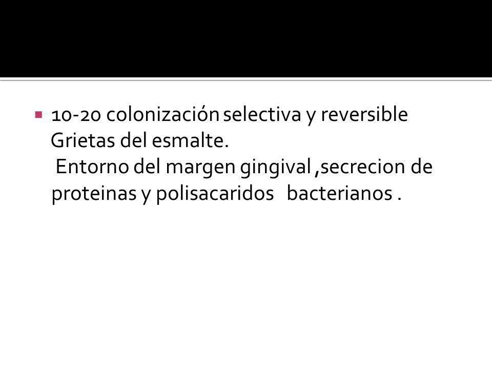 10-20 colonización selectiva y reversible