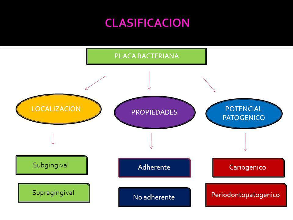 Periodontopatogenico