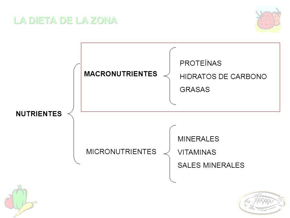PROTEÍNASHIDRATOS DE CARBONO. GRASAS. MACRONUTRIENTES. NUTRIENTES. MINERALES. VITAMINAS. SALES MINERALES.