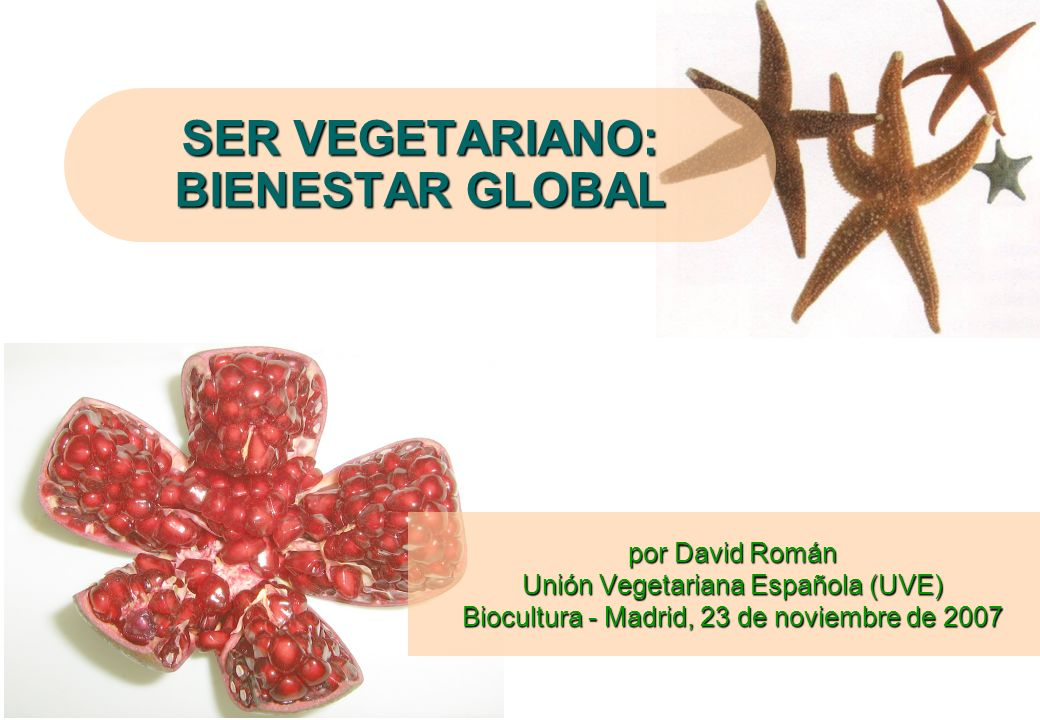 SER VEGETARIANO: BIENESTAR GLOBAL