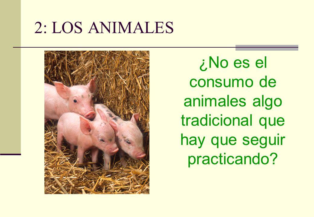 2: LOS ANIMALES ¿No es el consumo de animales algo tradicional que hay que seguir practicando