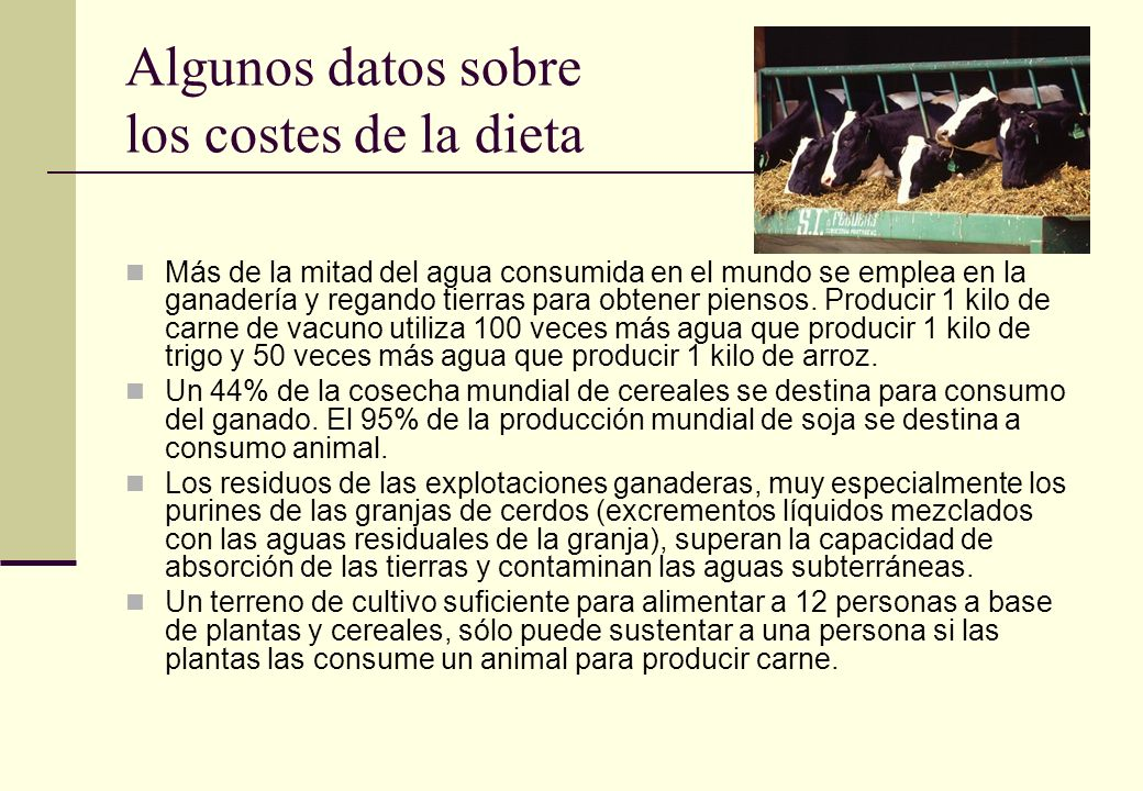 Algunos datos sobre los costes de la dieta