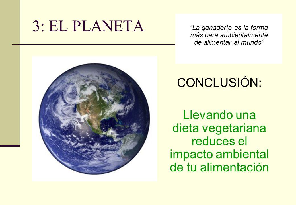 3: EL PLANETA CONCLUSIÓN: