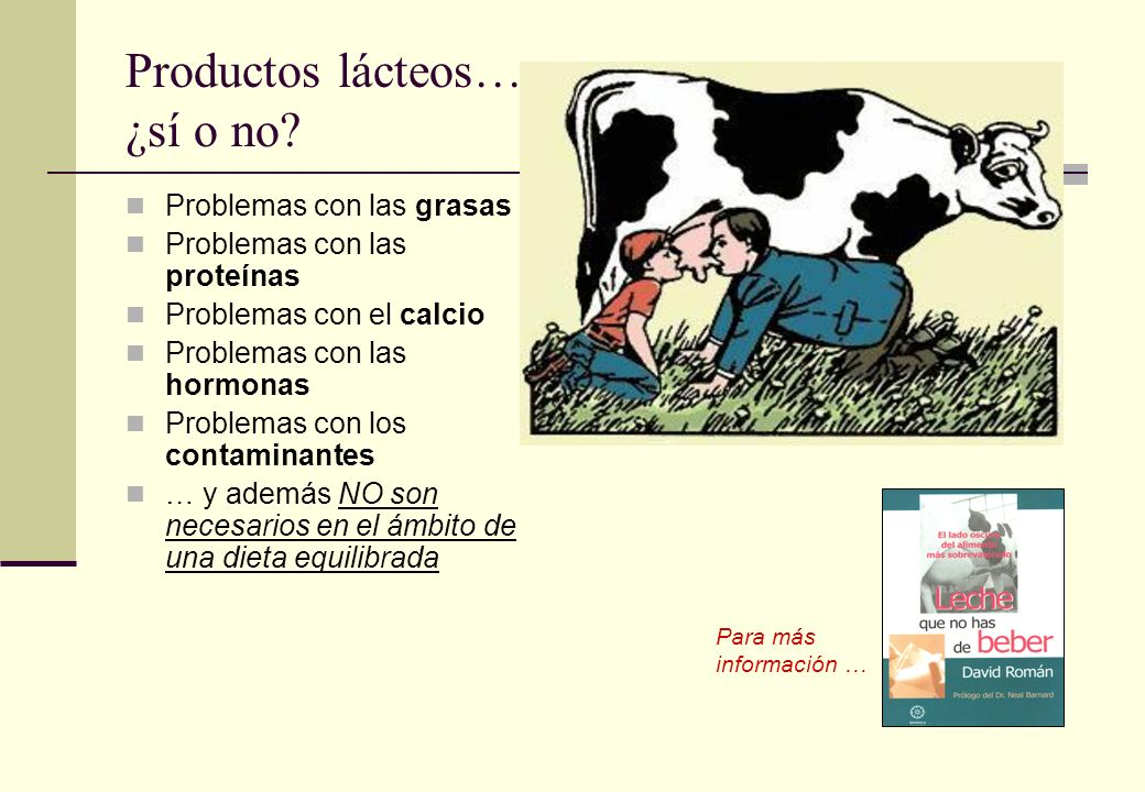 Productos lácteos… ¿sí o no