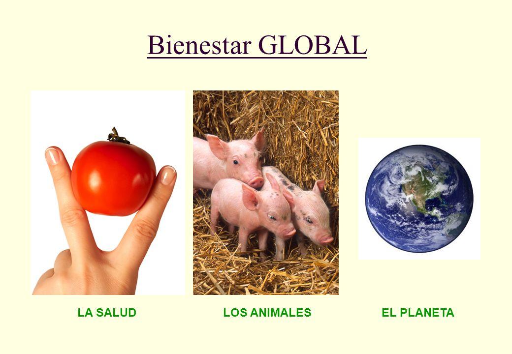 Bienestar GLOBAL LA SALUD LOS ANIMALES EL PLANETA