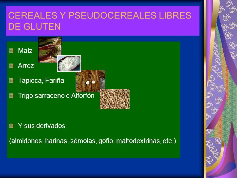 CEREALES Y PSEUDOCEREALES LIBRES DE GLUTEN