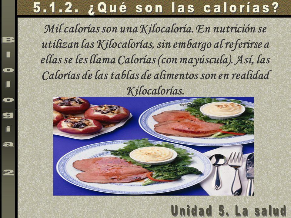 5.1.2. ¿Qué son las calorías