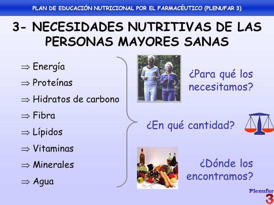 3- NECESIDADES NUTRITIVAS DE LAS PERSONAS MAYORES SANAS