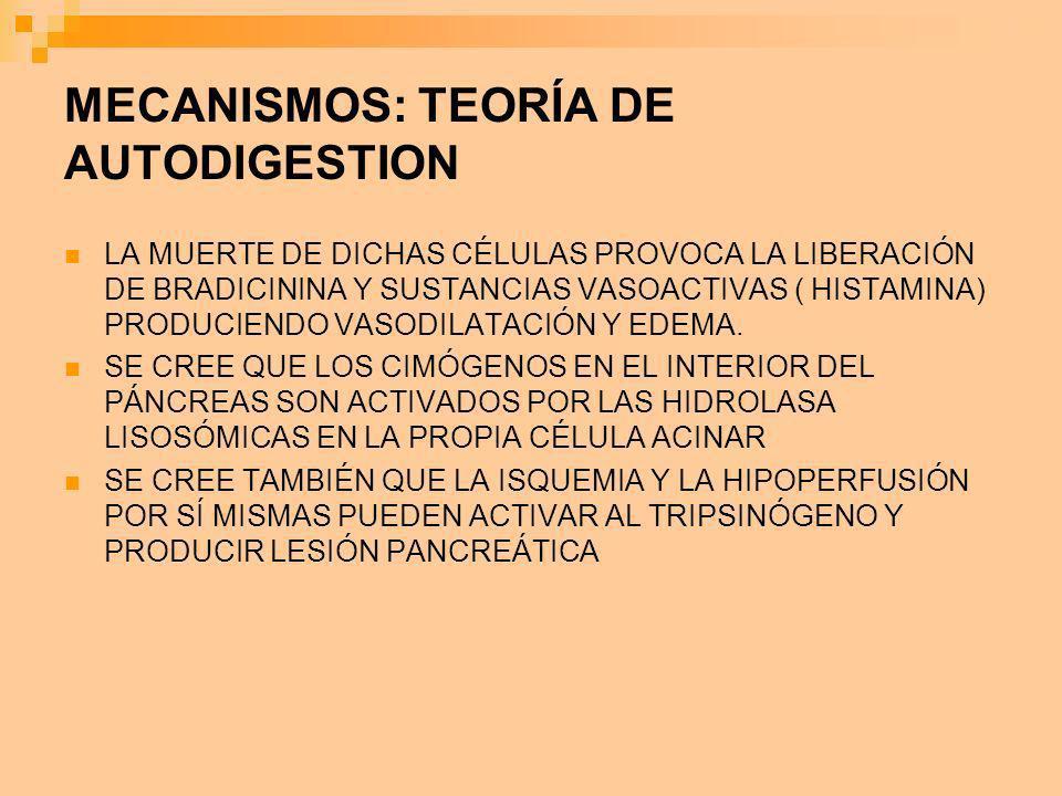 MECANISMOS: TEORÍA DE AUTODIGESTION