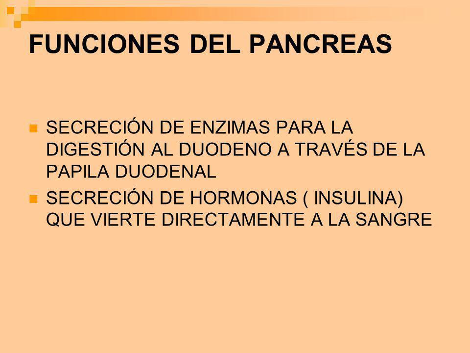 FUNCIONES DEL PANCREAS
