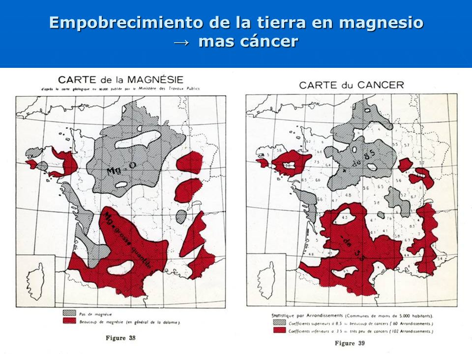 Empobrecimiento de la tierra en magnesio