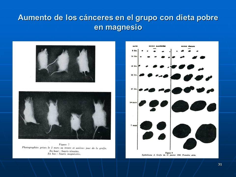 Aumento de los cánceres en el grupo con dieta pobre en magnesio