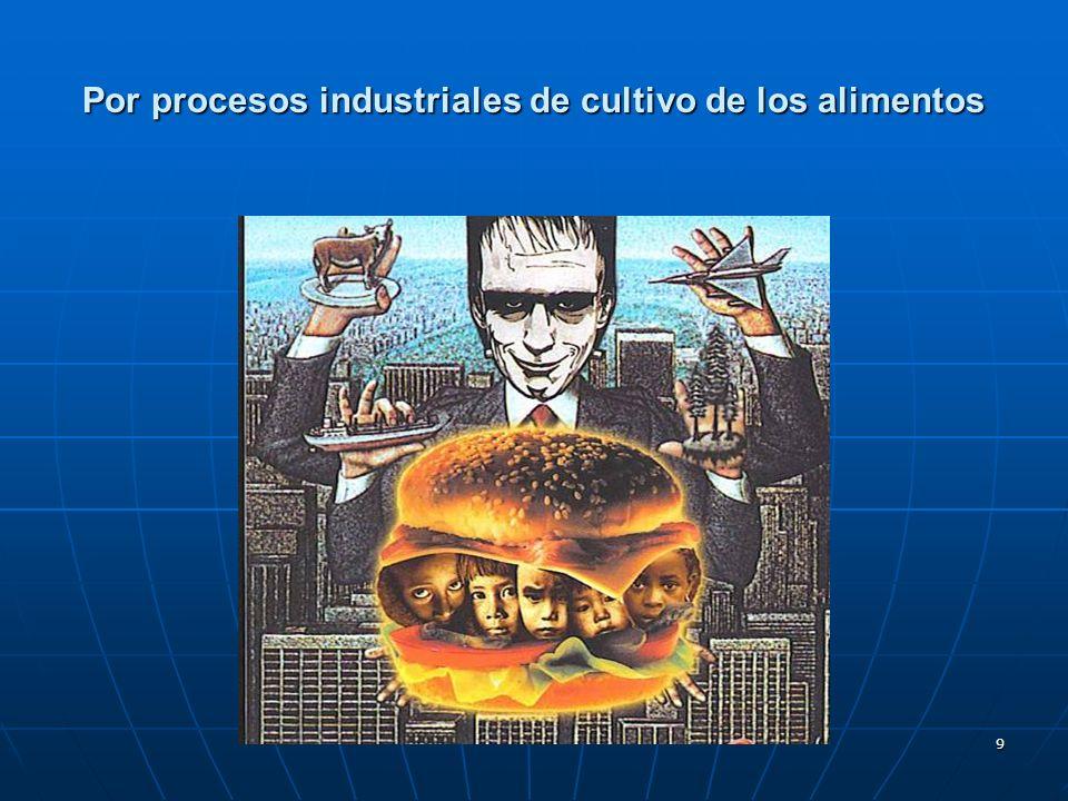 Por procesos industriales de cultivo de los alimentos