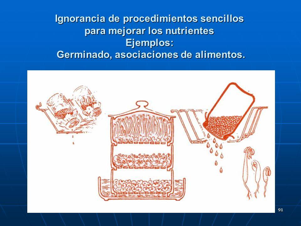 Ignorancia de procedimientos sencillos para mejorar los nutrientes Ejemplos: Germinado, asociaciones de alimentos.