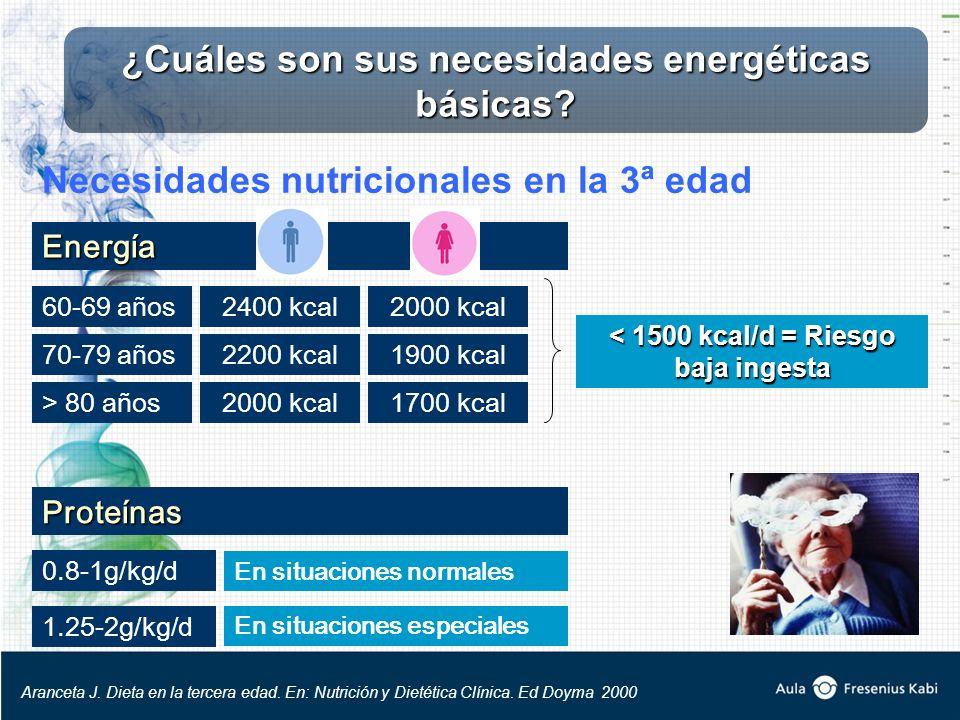 ¿Cuáles son sus necesidades energéticas básicas