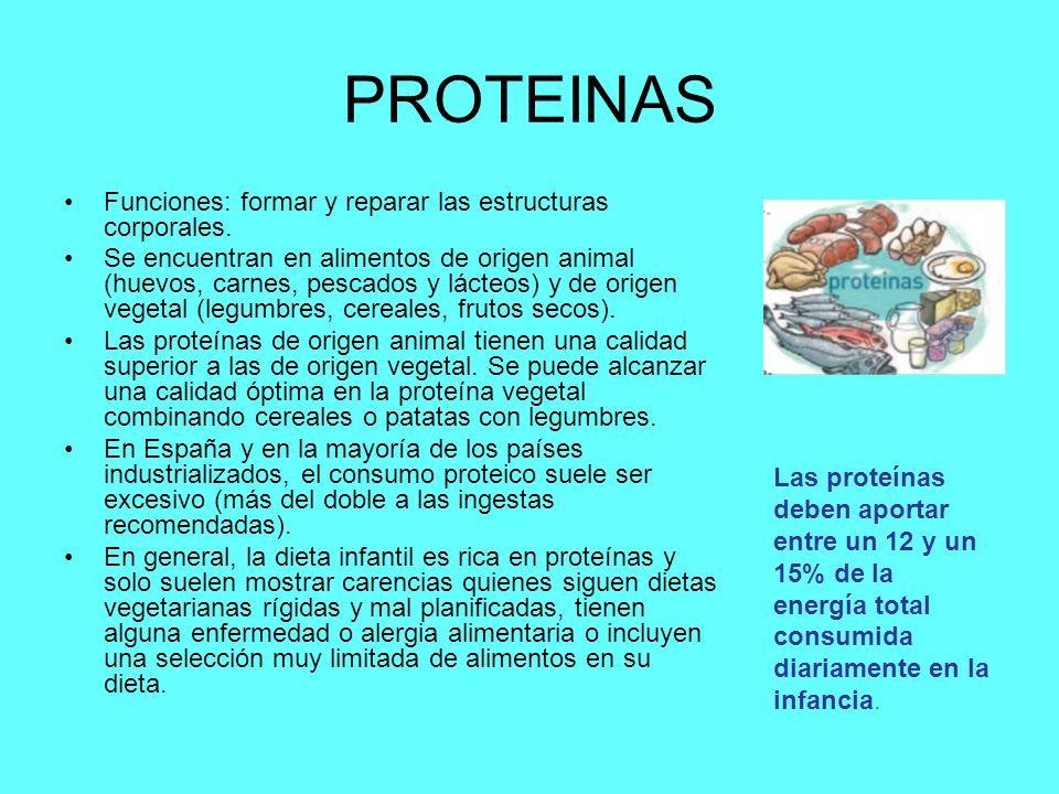 PROTEINAS Funciones: formar y reparar las estructuras corporales.