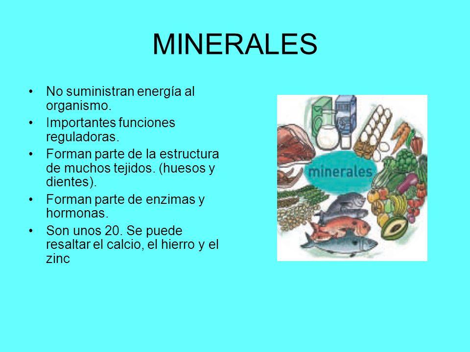 MINERALES No suministran energía al organismo.