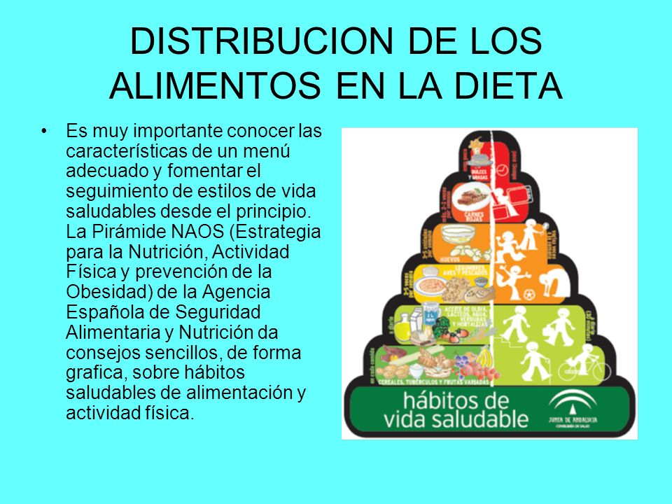 DISTRIBUCION DE LOS ALIMENTOS EN LA DIETA