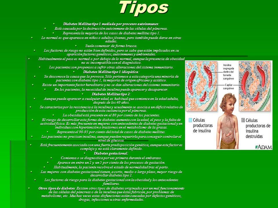 Tipos Diabetes Mellitus tipo 1 mediada por procesos autoinmunes: