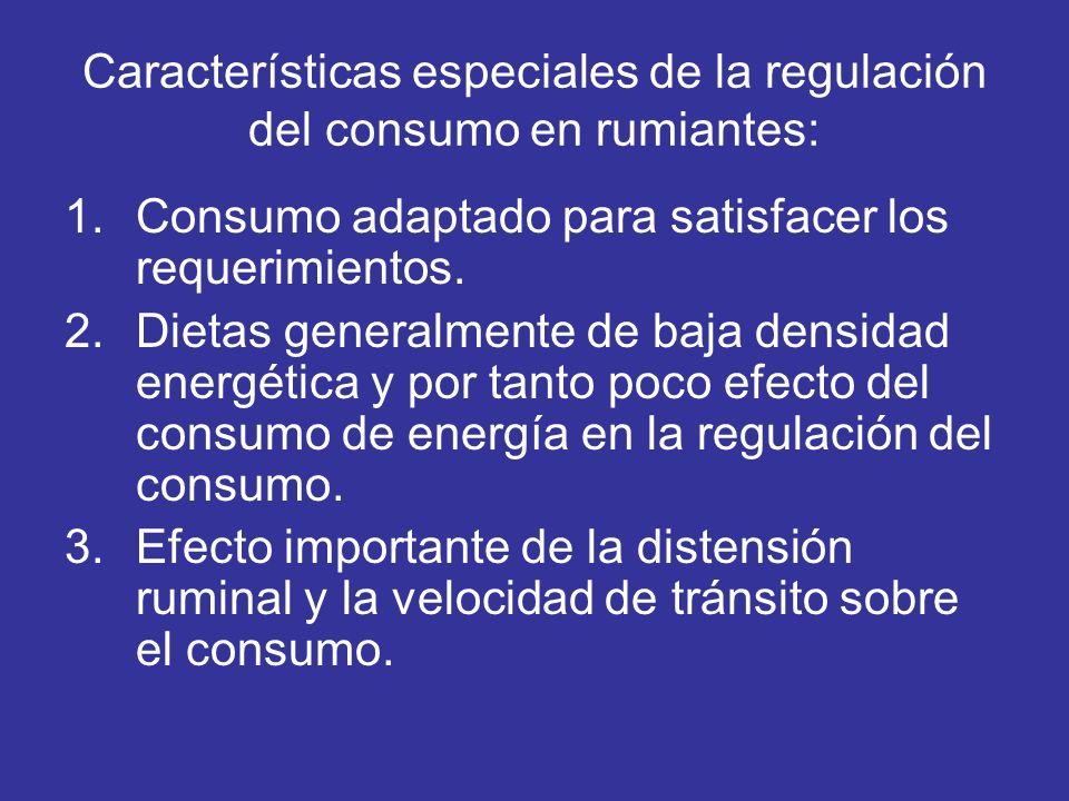 Características especiales de la regulación del consumo en rumiantes: