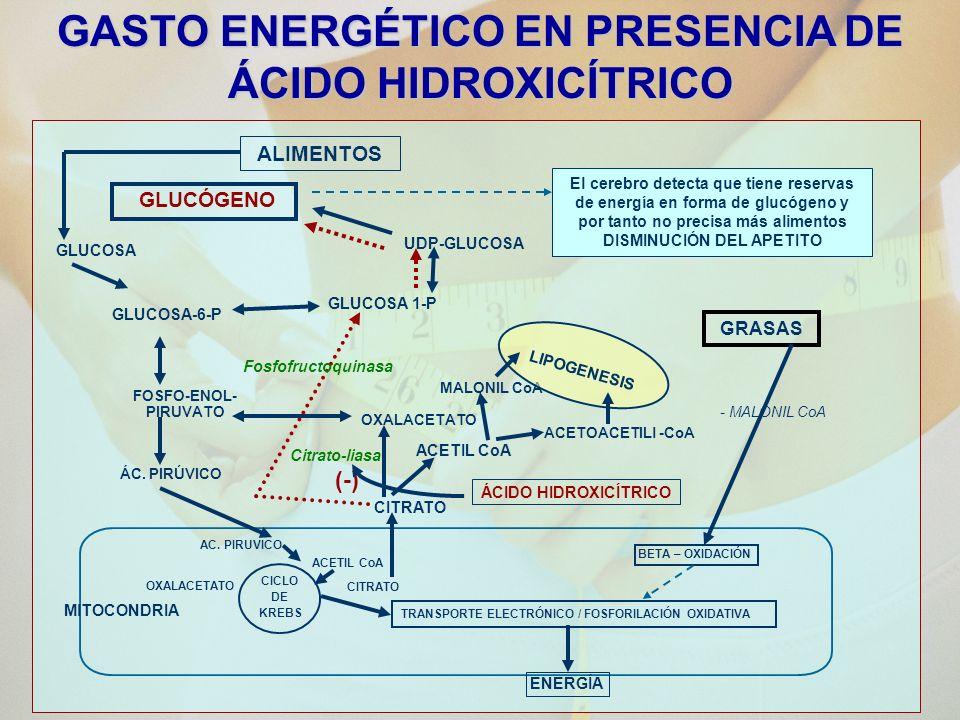 GASTO ENERGÉTICO EN PRESENCIA DE ÁCIDO HIDROXICÍTRICO
