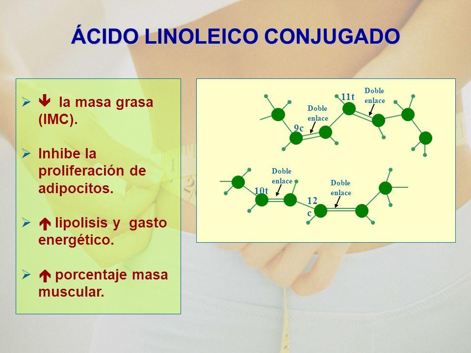 ÁCIDO LINOLEICO CONJUGADO