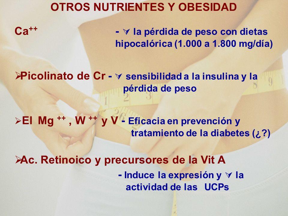OTROS NUTRIENTES Y OBESIDAD