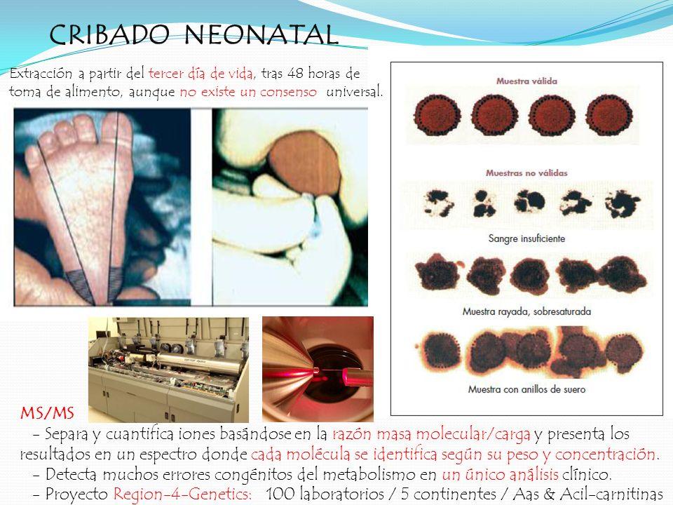 CRIBADO NEONATAL MS/MS