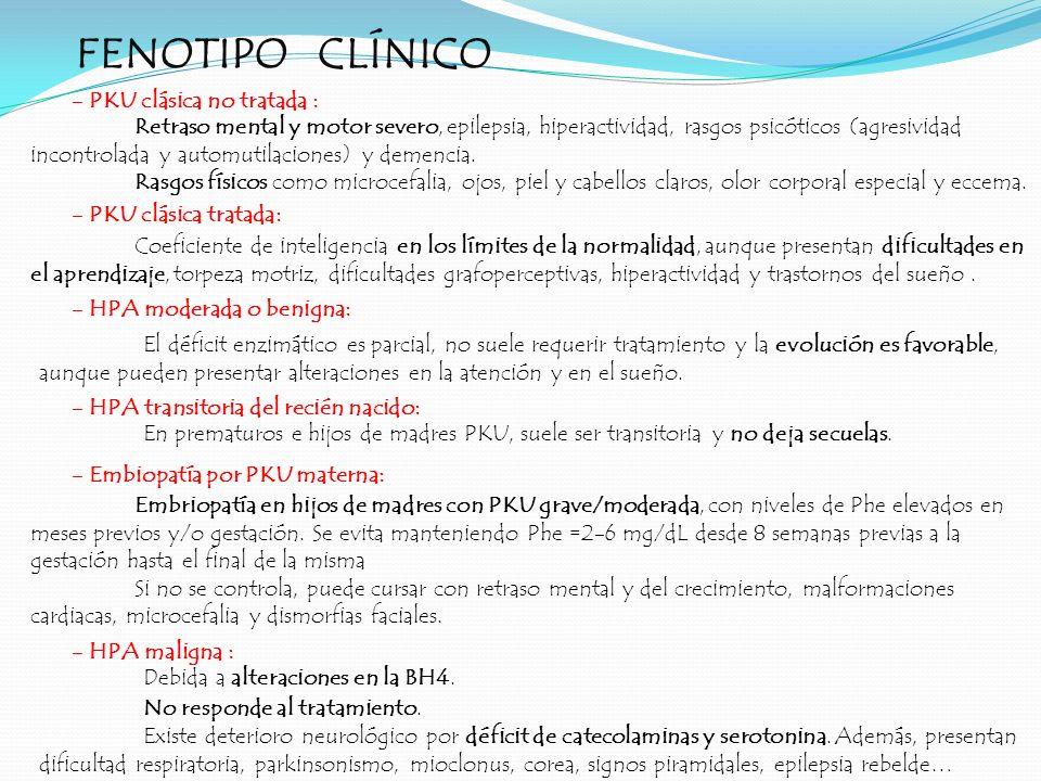 FENOTIPO CLÍNICO - PKU clásica no tratada :