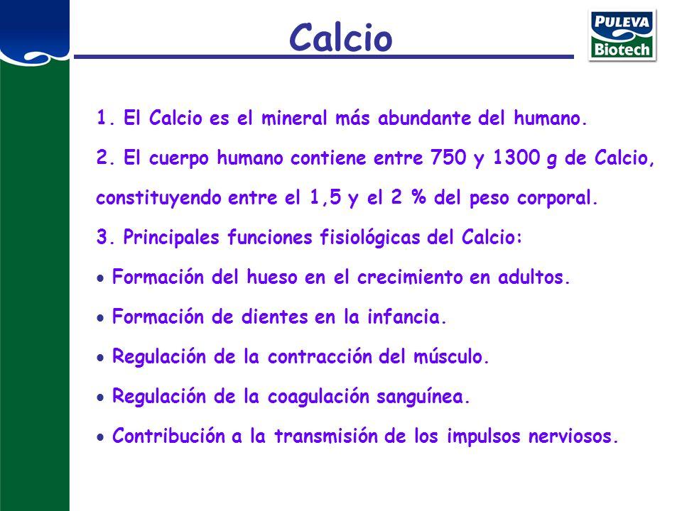 Calcio 1. El Calcio es el mineral más abundante del humano.
