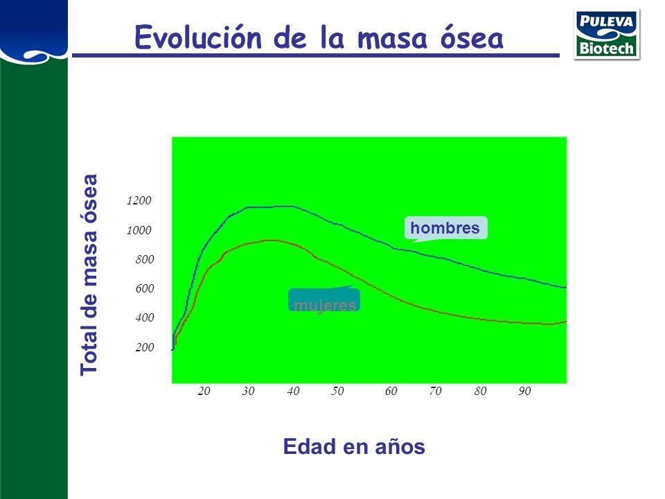 Evolución de la masa ósea
