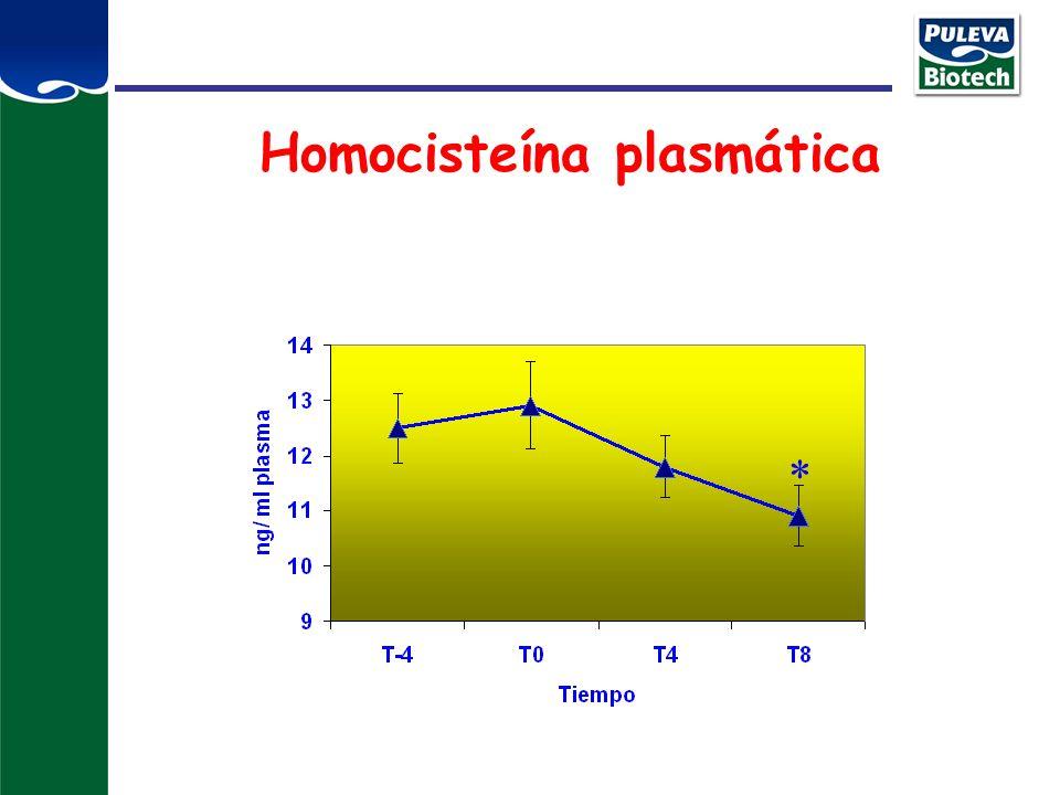 Homocisteína plasmática