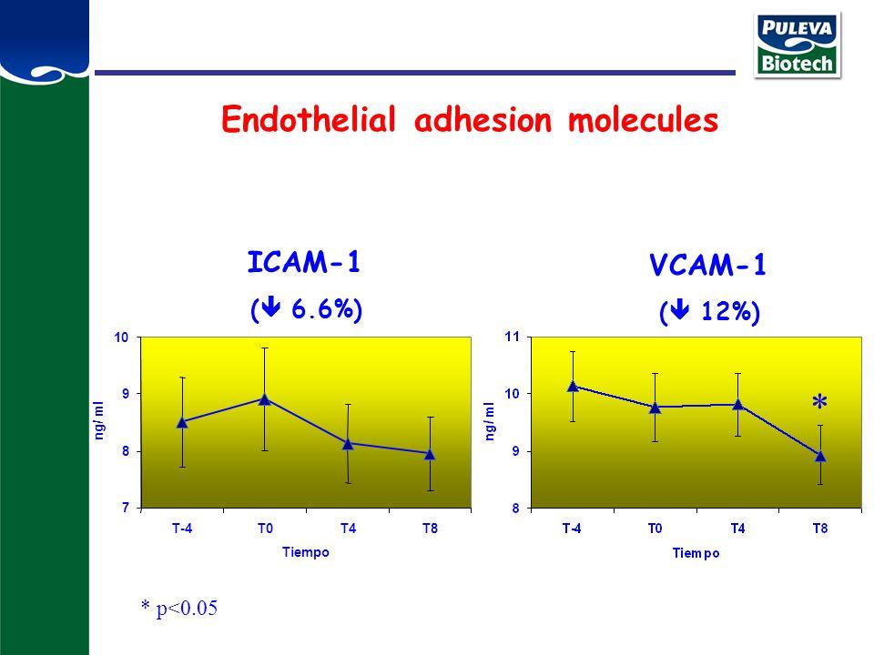 Endothelial adhesion molecules