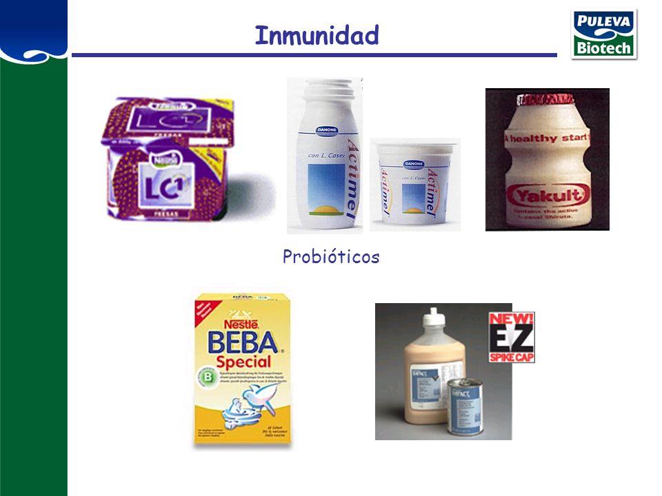Inmunidad Probióticos