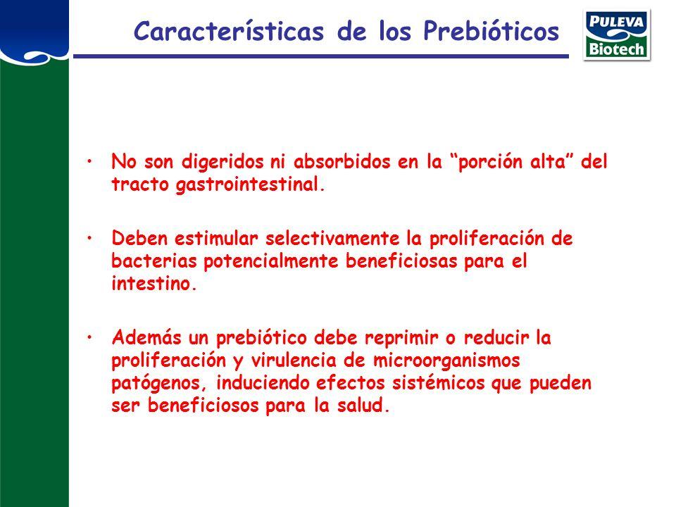 Características de los Prebióticos